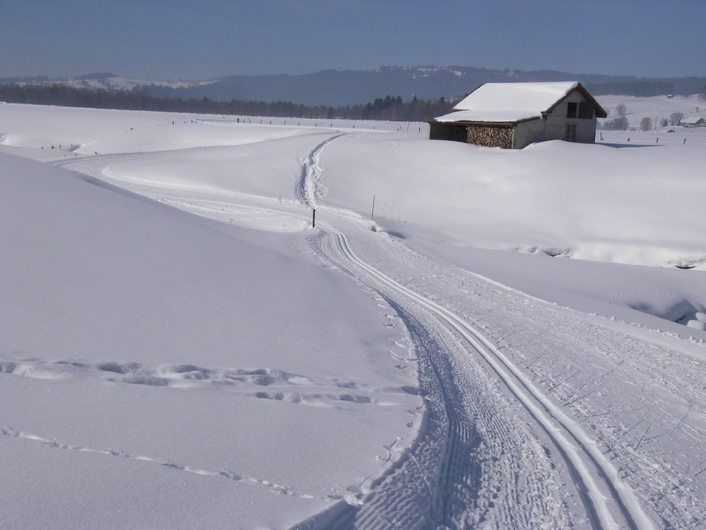 Ski de fond dans la vallée